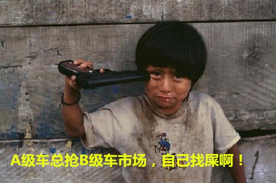 A级车又来抢B级车市场,自己找屎啊!.jpg