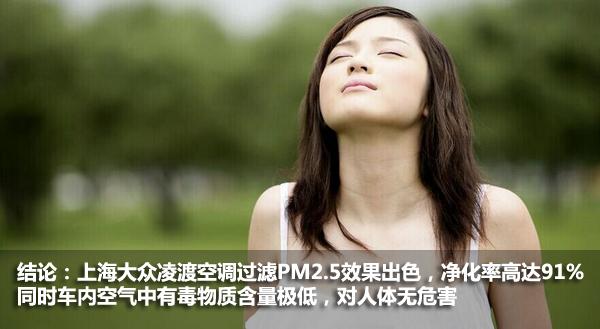 上海大众凌渡